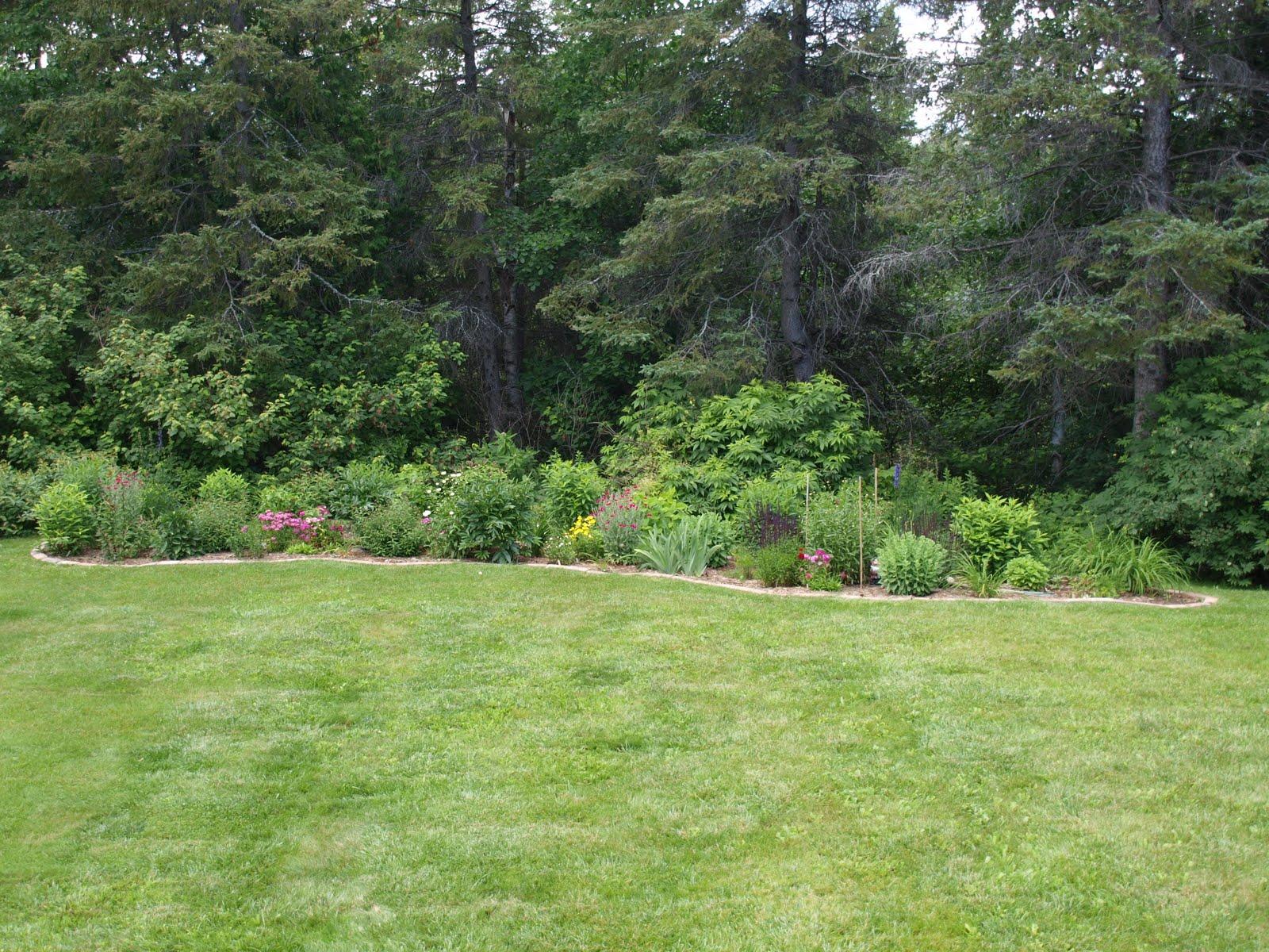 My cottage garden backyard border for Yard borders