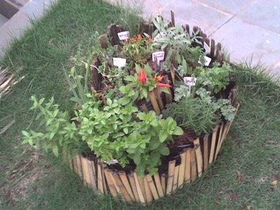 Horta e Vida