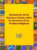 DECLARACION DE LAS NACIONES UNIDAS SOBRE LOS DERECHOS DE LOS PUEBLOS INDIGENAS