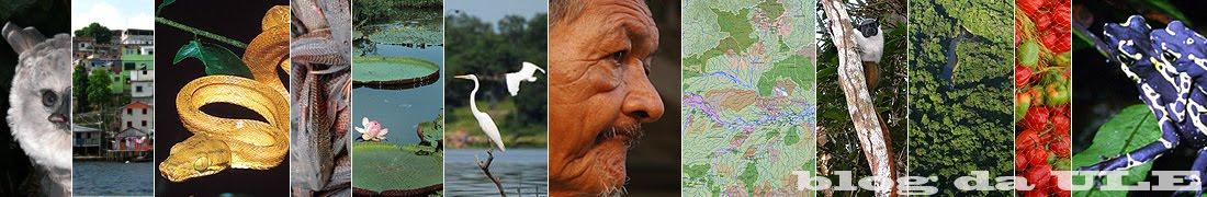 ULE, União Local de Ecólogos (Inpa): Ecologia da Amazônia
