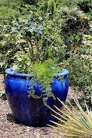 Cobalt Blue Pot