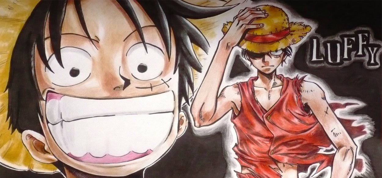 One Piece Cartoon Book