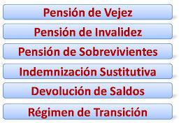 Tipos de Pensión