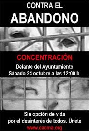 MANIFESTACIÓN 24 DE OCTUBRE
