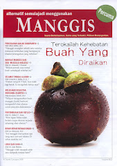Fakta Buah Manggis