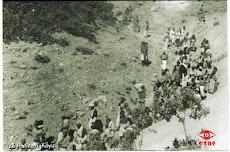 1937-38 DERSİM JENOSİDİSİNİN KRONOLOJİSİ