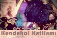 Türk Savaş Uçaklarının Kendekolê Katliamı