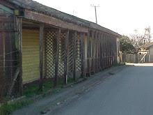 Galería de imágenes de Arauco