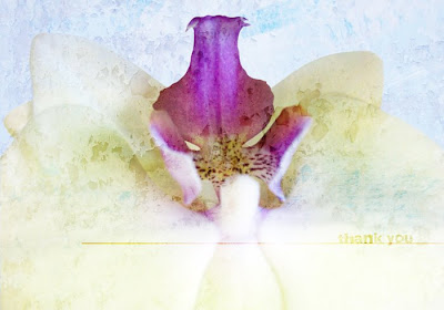 Heather Taylor, Etsy Orchid Thank You Card