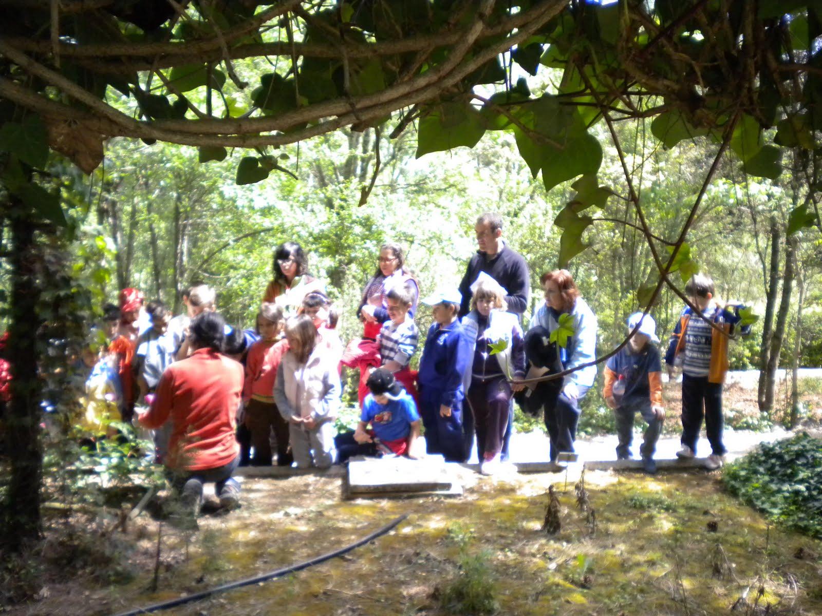 La ecoescuela del ceip antonio machado taller de ecologia for Talleres jardin botanico
