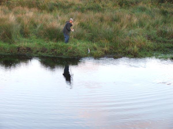 Hei gedd just een gudden Saumon um Inny River gefaang