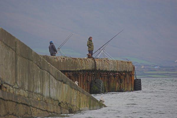 Den Reenard Pier, eng grouss Plaatz fir owes an nuets ze feschen