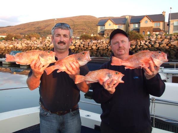 Hei 4 specimen fish (alles Bluemouth). (Wei gesoot, hei gett  spezifesch op eng Feschart gefescht