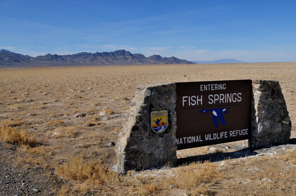 Photography of lowell harris fish springs national for Fish springs nevada