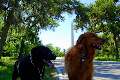 At The San Jacinto Monument