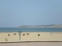 El mediterráneo y los camellos