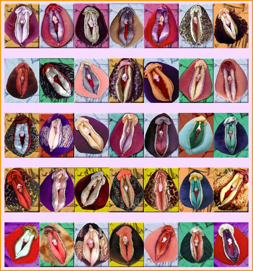 see different shape sizes of vaginas