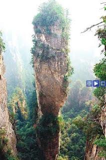 Pandora de Avatar en la Tierra