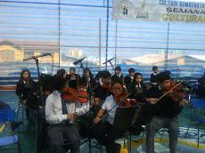 Orquesta de cámara se luce en semana cultural...