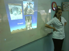 "Profesora Paulina Rosso, usando las TIC""S..."