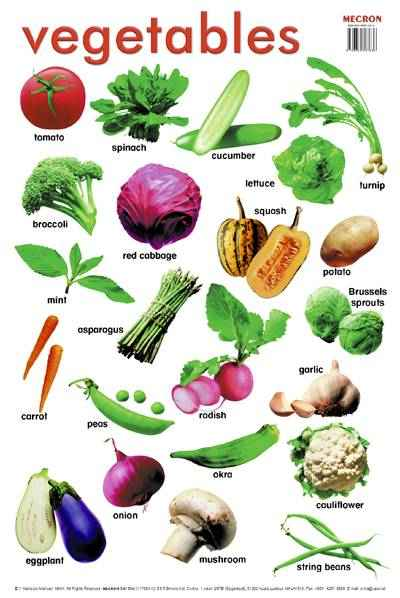 List All Vegetables with Name
