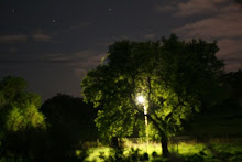 Luz é contactar com a Natureza
