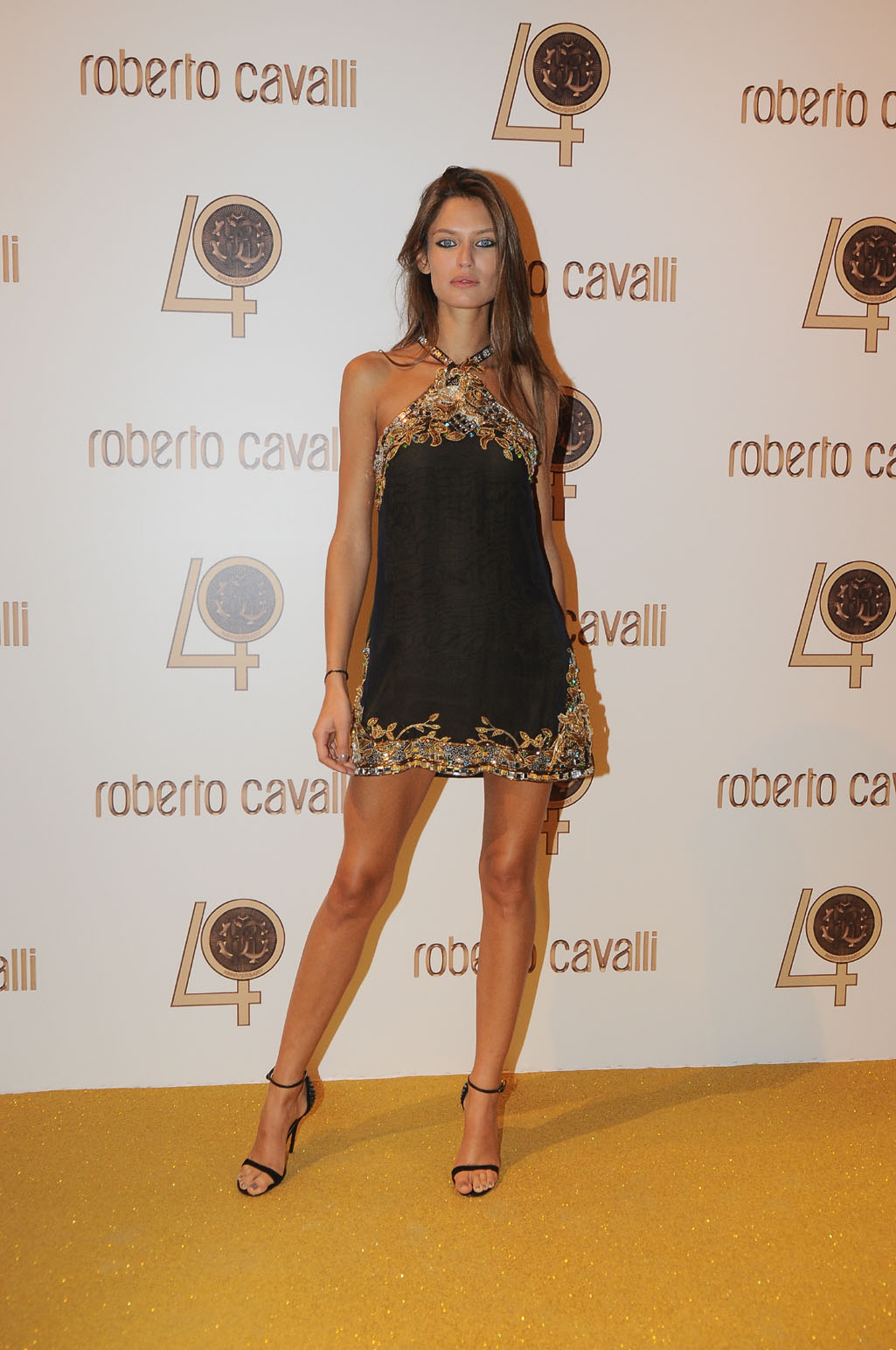 http://2.bp.blogspot.com/_2ZHypClFztM/TKrGDYyQEdI/AAAAAAAAAjk/GmmplLJiifc/s1600/Bianca+Balti+in+Roberto+Cavalli.jpg