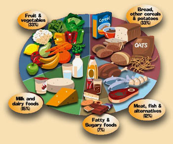 The+healthy+diet+plate