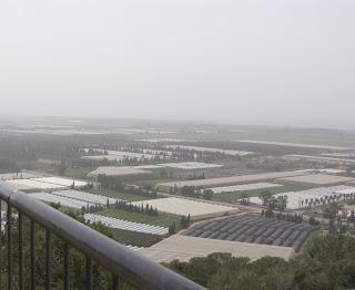 מגדל עופר שביער חוף הכרמל