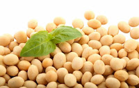 Soybean for health :  supplements herb associations herbal alternative cures medicine products supplements diets