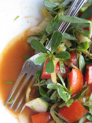 historical tour covering three southeastern cities Purslane Tomato Salad (Pirpirim / Semizotu Piyazı)