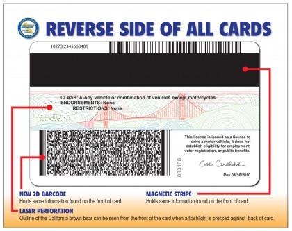 Alexisann New Drivers License
