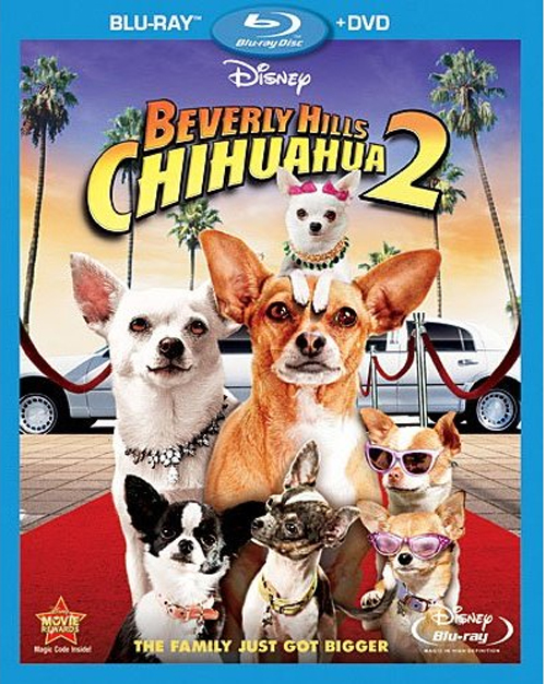 ... Beverly Hills Chihuahua 2 Now Available For Pre-Order On Blu-Ray & DVD