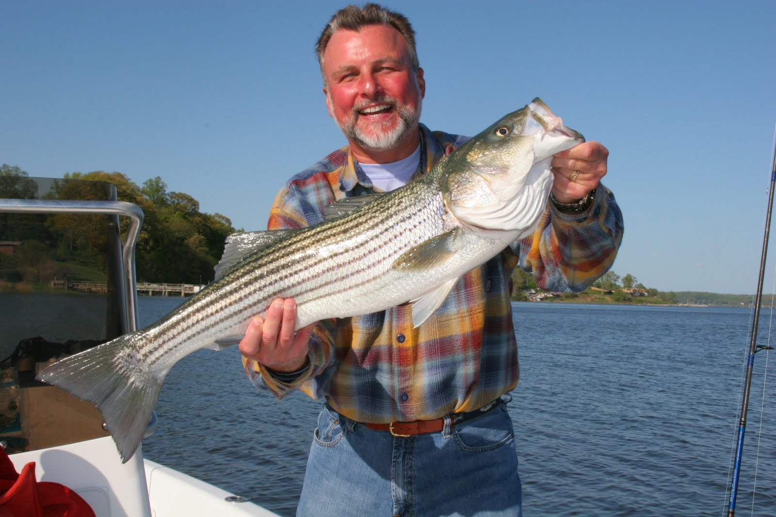 Terry sullivan 39 s fishing report a little update for Oceanside fish report