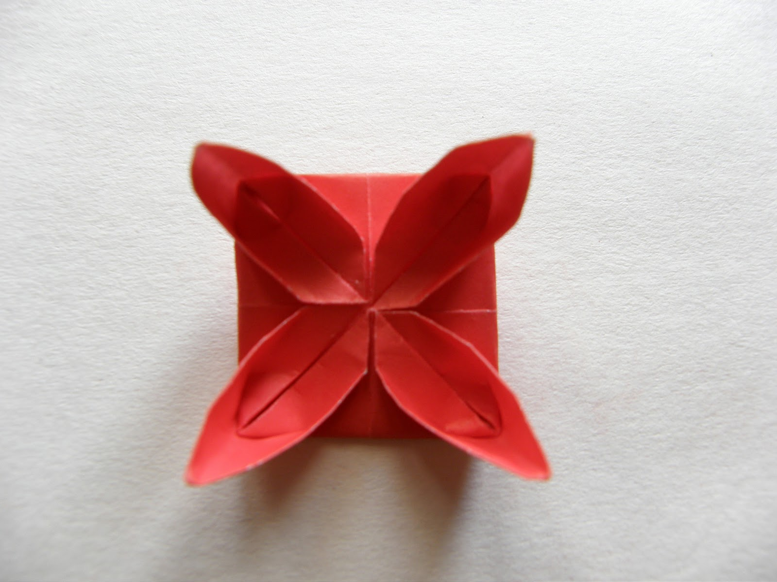 Waterlily Origami Guest Tutorial Honeybear Lane
