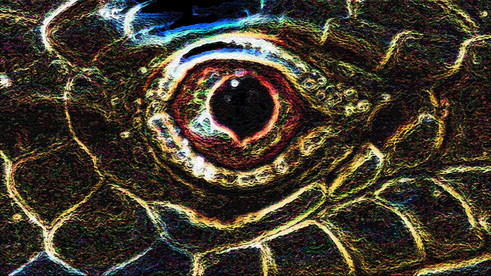 iguana eye painting - photo #44