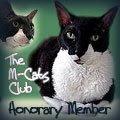 Caesar M-Cat member