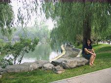 景色宜人的湖畔。。。