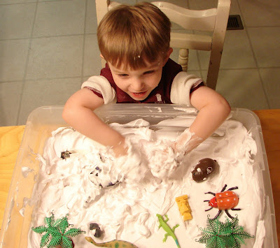 Playing in shaving cream sensory bin.
