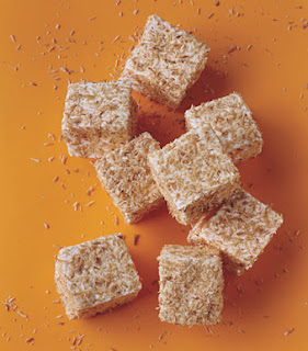 Toasted Coconut Marshmallow Squares Recipe