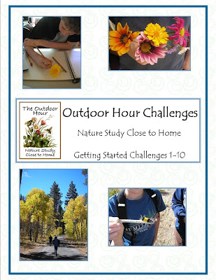 http://handbookofnaturestudy.blogspot.com/2009/02/announcing-outdoor-hour-challenge-ebook.html