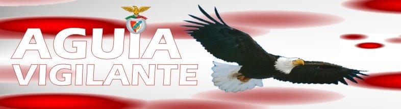 aguia vigilante