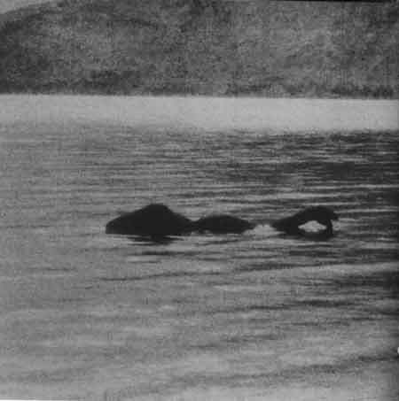 sightings of the lochness monster