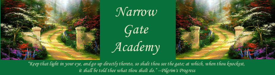 Through the Narrow Gate
