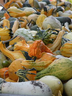 Multi-colored gourds