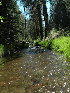 Lassen National Forest, Hat Creek running clean and clear