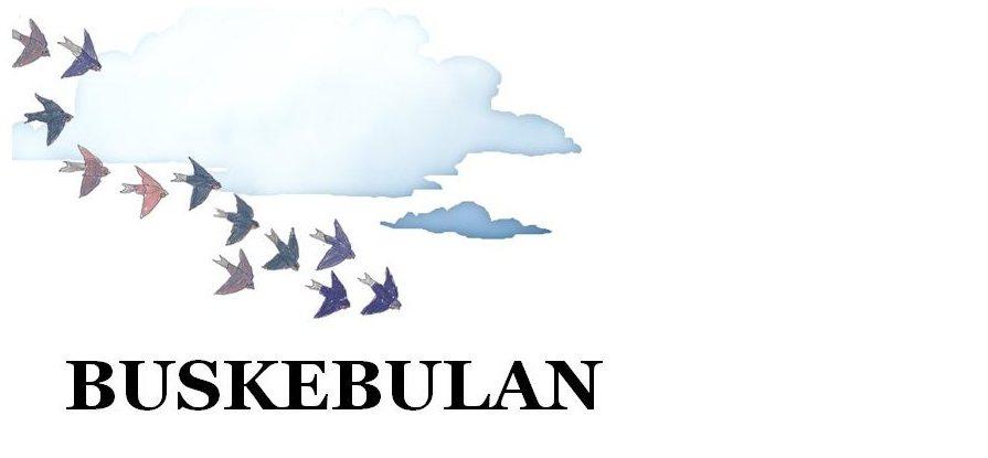 Buskebulan
