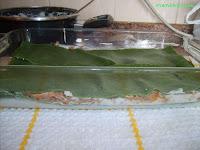 capa lasaña espinacas