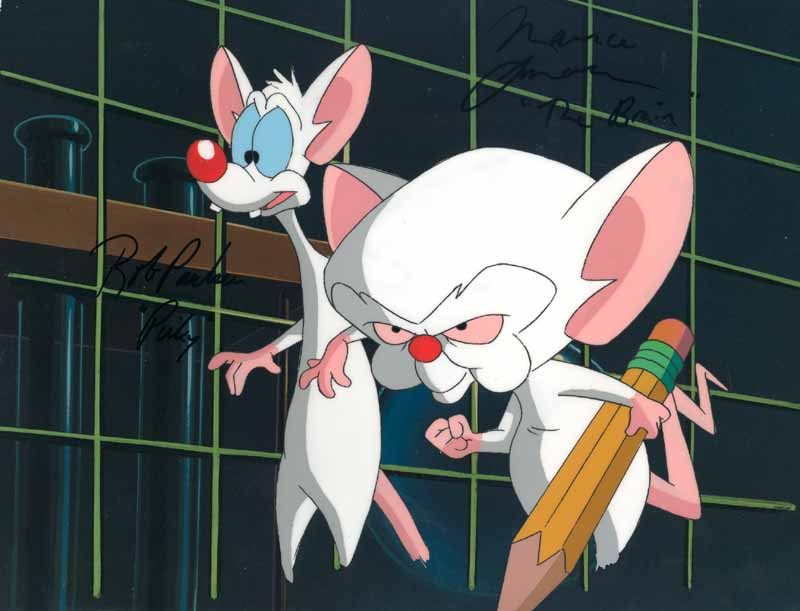 pinky and brain. Pinky and the Brain Wallpapers