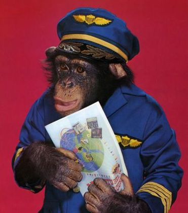 RWAR pilot